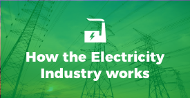 How the Nigerian Electricity Industry works